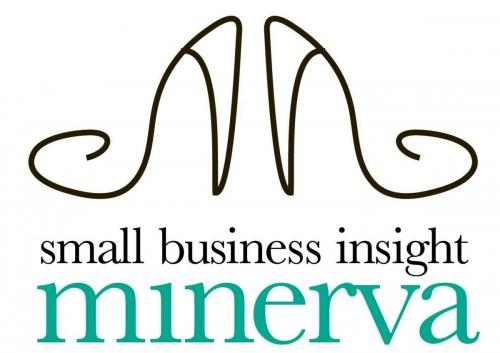 Small Business Insight Minerva Award